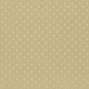 Papel Cardstock Bazzill Dotted Swiss Rope Swing